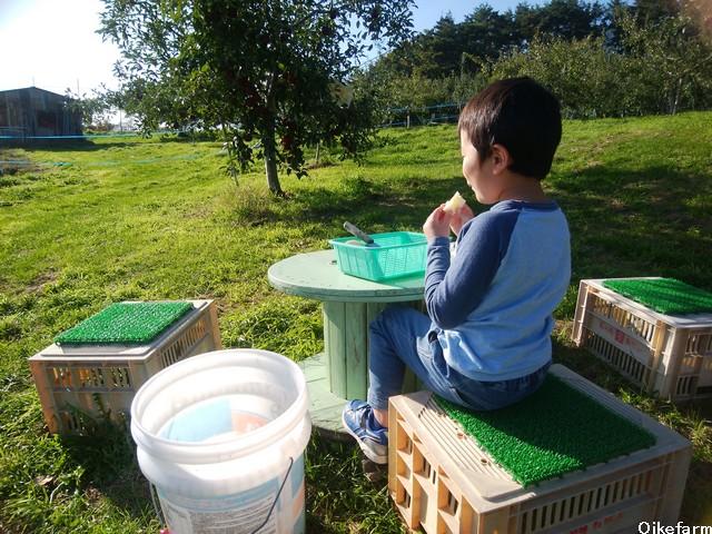 大池農園りんご試食
