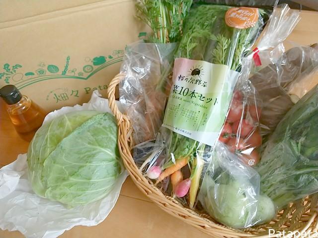 patapata野菜セット